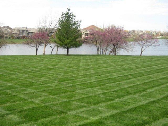 При покупке газонокосилки подберите нужную ширину полосы. Такая опция при разумном подходе может позволить создавать графичные дизайны на больших участках