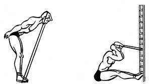 Тренировка спины на шведской стенке и с утяжелителями - фото тренируем низ спины