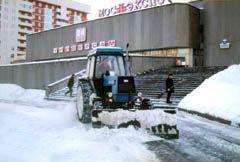 Услуги по уборке, погрузки и выозу снега - фото 7