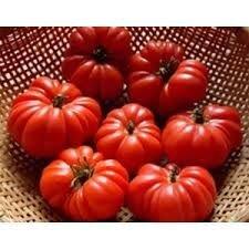 португос томат