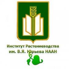 Посевной материал ГОРОХ - селекция ин-тут им. Юрьева для Украинских чернозёмов - фото pic_b5b924c0b875e65_700x3000_1.jpg