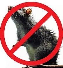 Щелкунчик, отрава от крыс и мышей, Бродифакум Родентицид, зерновая приманка со вкусом арахиса. Мешок 10 кг. - фото pic_b07d0fb2b1602e2_1920x9000_1.jpg