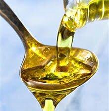 Семена подсолнечника НС ФАНТАЗИЯ, Цена на высокоурожайный 52 ц/га и олийный 50% гибрид Фантазия Нертус Агро. - фото pic_9035abc7f63749b_1920x9000_1.jpg