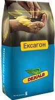 ЕКСАГОН озимый рапс, Высокоурожайный -  5,6 т/га, Засухоустойчив. Среднеранний Dekalb/Monsanto. - фото pic_a88ca37c48bf1ef_700x3000_1.jpg