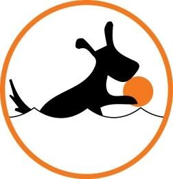 Collar LIKER Коллар Лайкер мячик-игрушка для собак 7 см. - фото Плавучий, не тонет