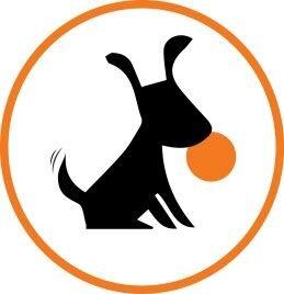 Collar LIKER Коллар Лайкер мячик-игрушка для собак 9 см. - фото Лёгкий