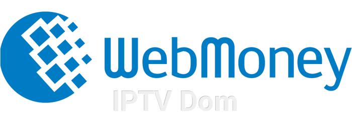 Настройка и тестовое подключение к  IPTV RU - фото pic_e1fa39333a6c2d9_700x3000_1.png