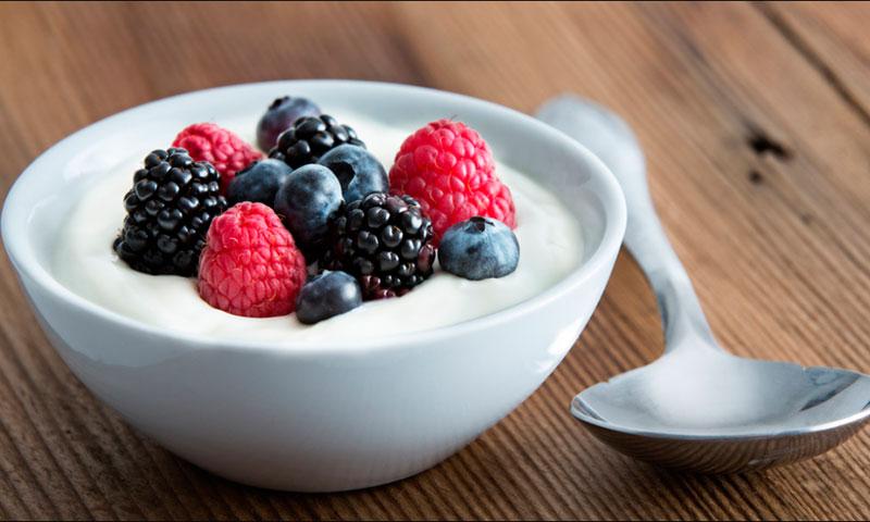 Йогуртницы, мороженицы - фото Принцип работы и устройство йогуртницы