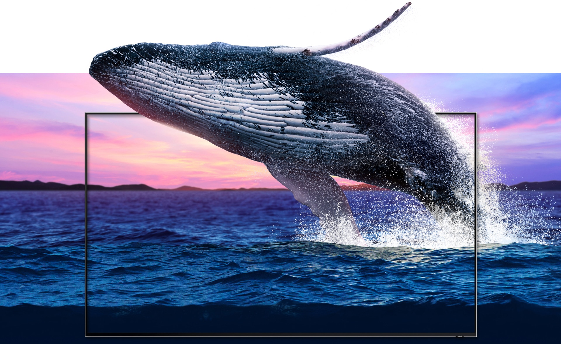 Представляємо QLED 2019 - фото A vibrant seascape juxtaposed with a new QLED TV frame set in the middle, through which a large humpback whale leaps as it emerges from the ocean. The waves and details of the whale are shown in a detail equalling that of real life.