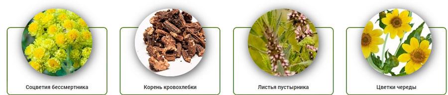 состав Эко Анти Токсин
