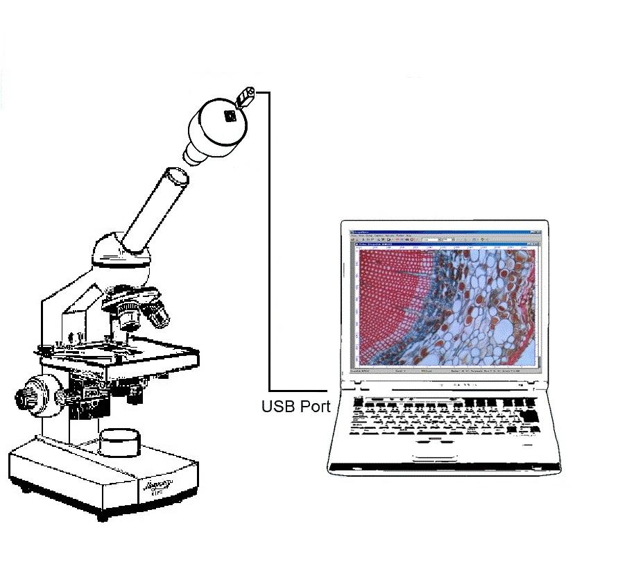 Микроскоп биологический  Микромед C-1-LED - фото Видеоокуляр_С-1_комп_рисунок.jpg