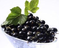 Черная смородина. Полезные и целебные (лечебные) свойства черной смородины. Чем полезна черная смородина. Лечение черной смородиной