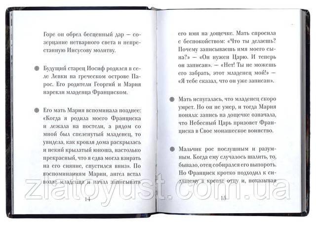 Преподобный Иосиф Исихаст. Рожнёва Ольга - фото 2