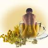 Травяной чай от остеохондроза,монастырский чай от остеохондроза - фото травяной чай от остеохондроза