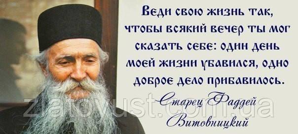 Мир и радость в Духе Святом. Старец Фаддей Витовницкий (мягкая) - фото 1