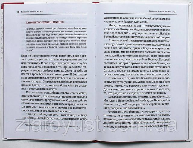 Молитвами святых отец наших. Беседы по древнему патерику. Протоиерей Андрей (Лемешонок) - фото 2