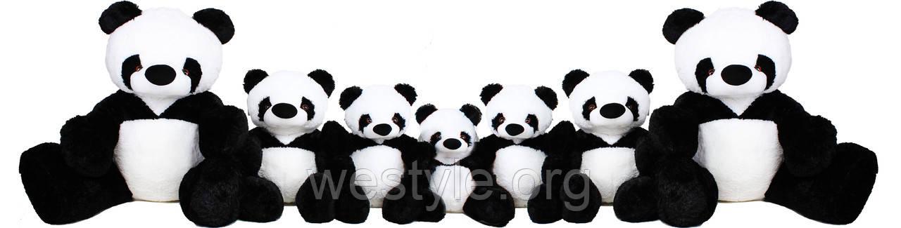 Панда, фото 7