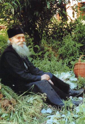 Мир и радость в Духе Святом. Старец Фаддей Витовницкий (мягкая) - фото 4