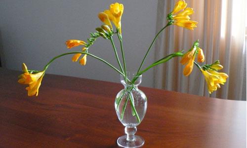 Вазы - фото Какую вазу для цветов выбрать