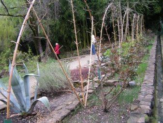 Подставки и опоры для растений - фото 26