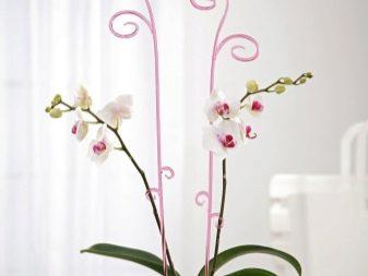 Подставки и опоры для растений - фото 25