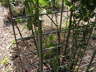 Подставки и опоры для растений - фото 23