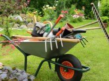Черенки для садового инструмента - фото 17