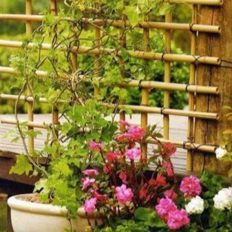 Подставки и опоры для растений - фото 14