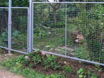 Сетки садовые - фото 9