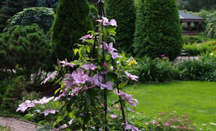 Подставки и опоры для растений - фото 31