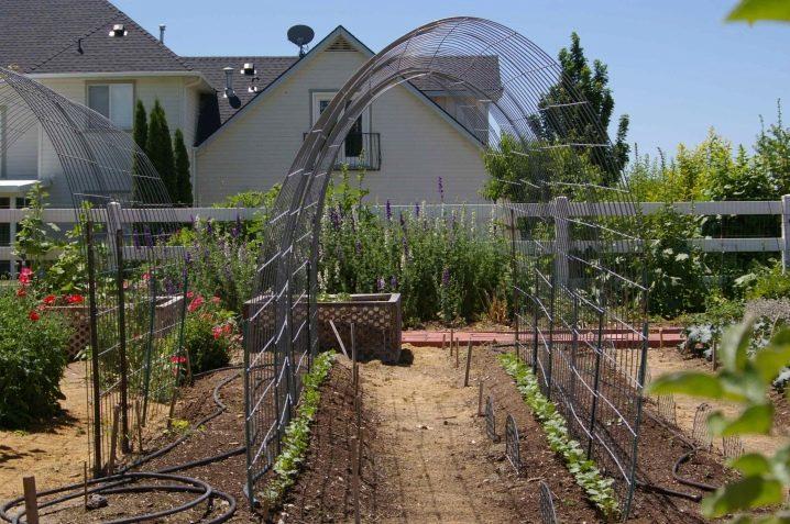 Подставки и опоры для растений - фото 30